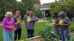 CPA Day of Service participants from Washington, Pittman & McKeever, LLC in Chicago join Illinois CPA Society President & CEO, Todd Shapiro (2nd from left), at a community garden on the city's west side.